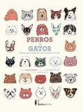 Perros y gatos bajo la lupa de los científicos...