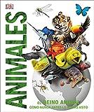 Animales: El reino animal como nunca antes lo habías...